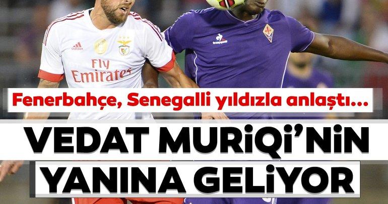 Son dakika: Fenerbahçe transferde sona yakıni! Vedat Muriqi'nin yanına geliyor