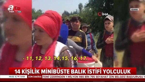 Adana'da şoke eden görüntü... 14 kişilik araçtan 35 kişi indi | Video