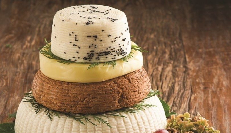 Bol peynirli tarifler
