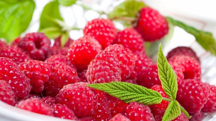 En sağlıklı 50 besin