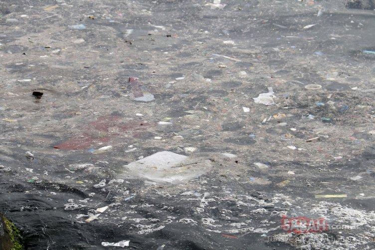 Yenikapı sahilinde iç acıtan görüntü... Balıklar kirliliğin içinde yaşam savaşı veriyor