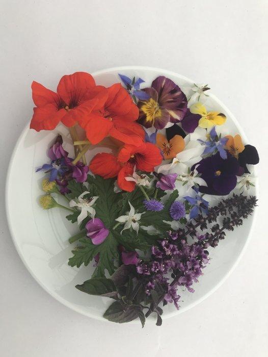 Hem göze hem damağa hitap eden çiçek!