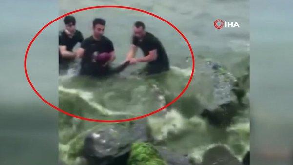İstanbul'da denize atlayarak intihar girişiminde bulunan kadını polislerin kurtarma anı kamerada | Video