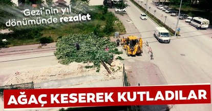 Bolu'da Gezi'nin yıldönümünde rezalet! Ağaç keserek kutladılar