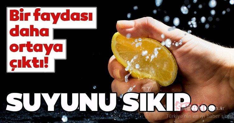 Limonun bir faydası daha ortaya çıktı! İşte limon suyunun inanılmaz faydaları...