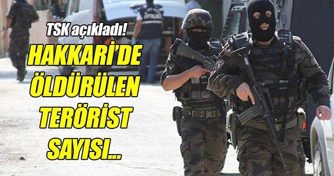 """TSK: """"Çukurca'da 254, Hakkari'de 374 terörist etkisiz hale getirildi"""""""