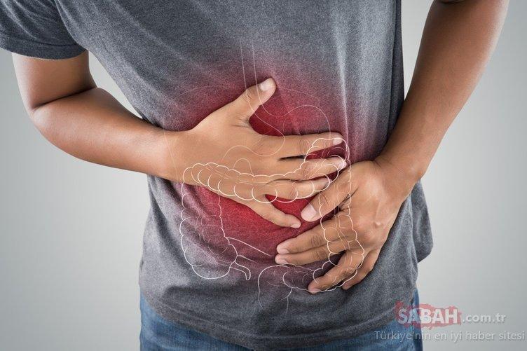 Bu diyet mikrobiyotanızı düzenleyip 5 günde 2 kilo vermenizi sağlıyor!