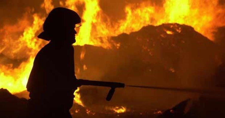 İzmir'de makilik alandaki yangın