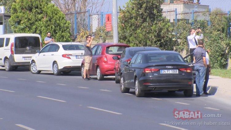 Araçlarını durdurup, yola indiler... Gören herkes telefonuna sarıldı!