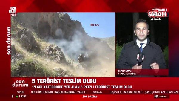 İçişleri Bakanlığı: 5 terörist güvenlik güçlerine teslim oldu | Video