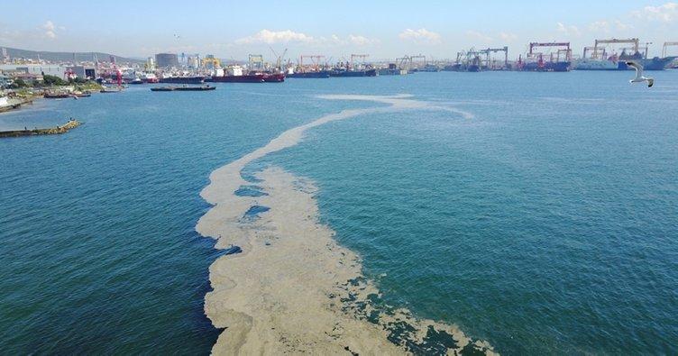 Son dakika: İstanbul'da tedirgin eden görüntü! Deniz yüzeyini kapladı...