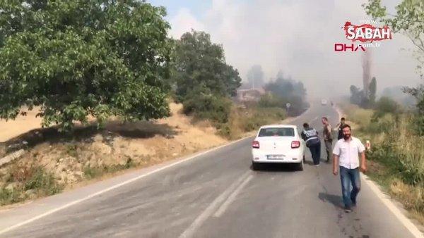 Sakarya'da orman yangını! | Video