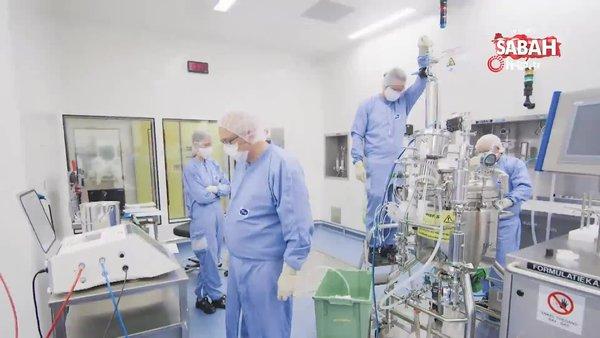İlk koliler yola çıktı! Pfizer-BioNTech'in dünyaya umut olan aşılarının üretim süreci görüntülendi | Video