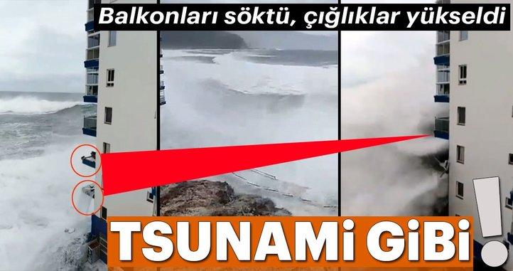 Tsunami gibi!