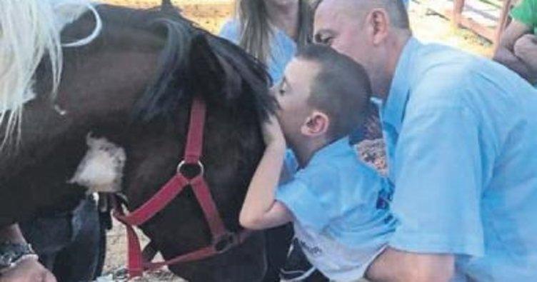 At sevgisi ile sosyalleştiler