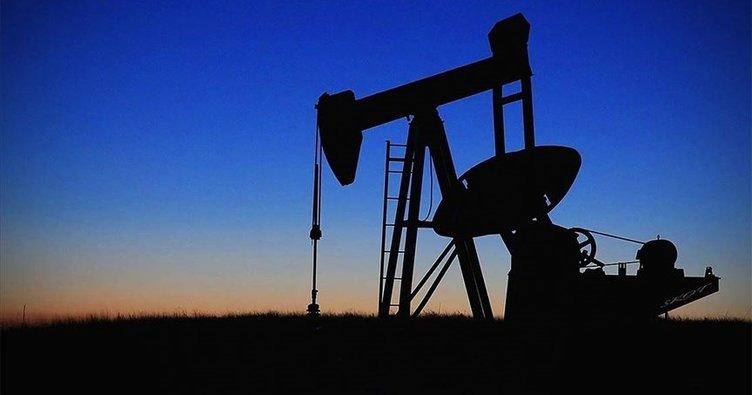 Ekonomik toparlanmanın hızlı olacağı beklentisi petrol fiyatlarını destekliyor