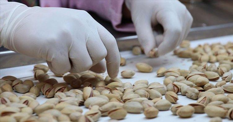 Antep fıstığı  'Çin Seddi'ni aştı