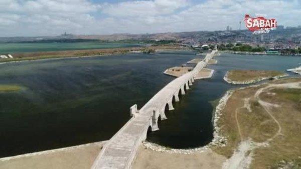 Büyükçekmece Gölü'nde korkutan görüntü: Su seviyesi yüzde 30 seviyelerine düştü   Video
