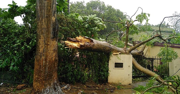 Fani kasırgası Bangladeş'te 2 bin 300'den fazla evi yıktı