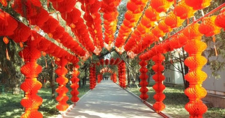 Çin'de 'Köpek Yılı' coşkusu!
