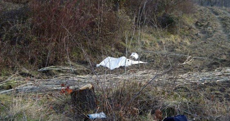 Mantar toplamaya giden kadın ormanda ölü bulundu