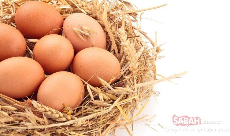 Yumurtalarıkartonundan çıkarıp koyuyorsanız bu uyarıya dikkat!