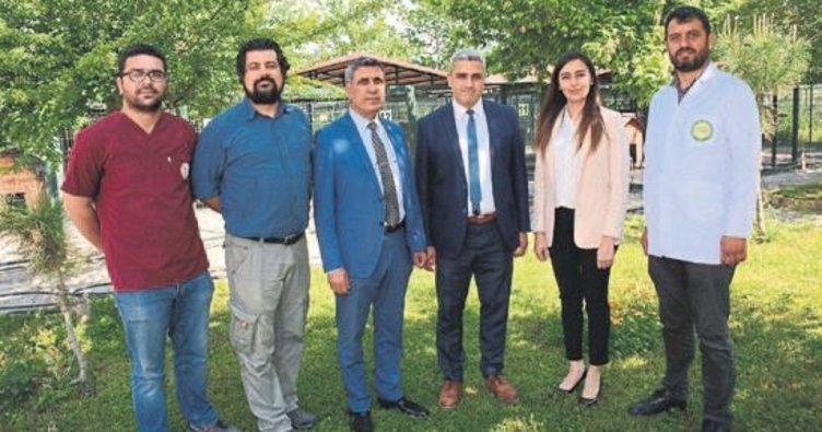 Osmaniye'de örnek proje
