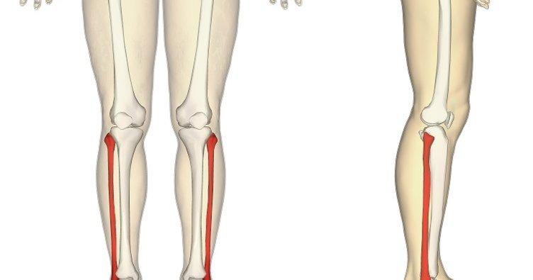 Bacağın dizden ayak bileğine kadar olan bölümüne ne denir? - 12 Eylül Çarşamba ipucu sorusu cevabı