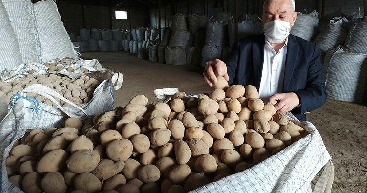 Başkan Erdoğan'ın müjdesi Ahlatlı patates üreticilerini sevindirdi