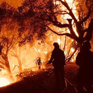 California'daki yangının boyutu New York'u geçti