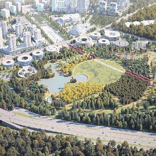 Göletten botanik park doğdu