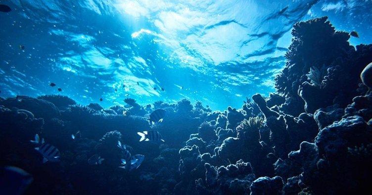 RÜYADA DENİZ GÖRMEK - Rüyada denize düşmek ve berrak ve sakin sularda denizde yüzmek neye işarettir, ne anlama gelir?