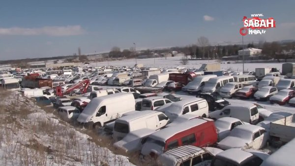 Piyasa değeri milyonları bulan binlerce araç çürümeye terk edildi | Video