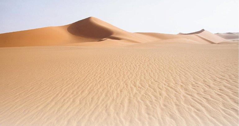 Sahra Çölü'nde yaşam ve toprak savunması
