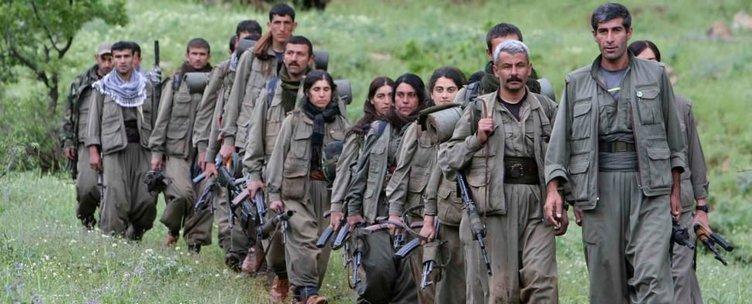 Türkiye'de milyonluk terörist avı