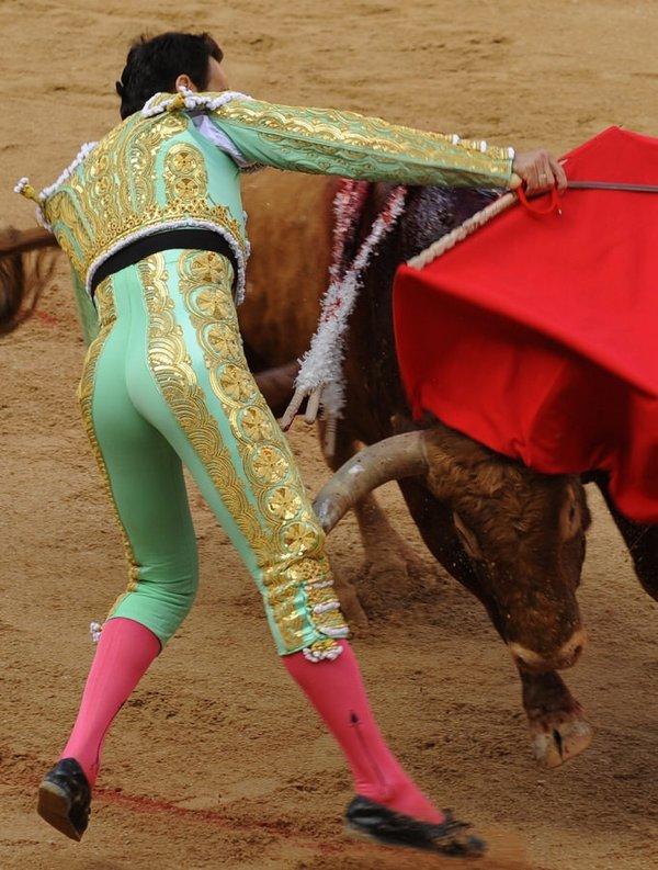 Boğa matadoru rezil etti
