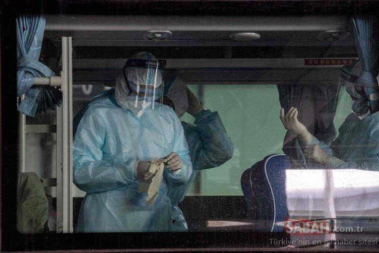 Dünya merak ediyordu: Coronavirüsün kaynağını bulacaklar...