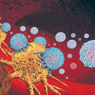 Kanserle mücadele eden iki molekül keşfedildi