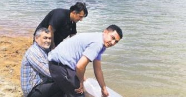 Kırıkkale'nin göletleri balıklandırılıyor