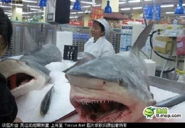 Çin'deki marketlerde satılan sıradışı ürünler