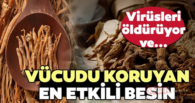 Virüsleri öldüren ve vücudu koruyan en etkili besin...