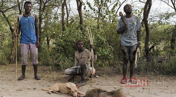 Son ilkel kabileler
