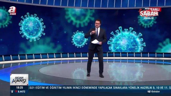 Gözler 17 Mayıs'a çevrildi... 3 Aşamalı normalleşme planı ile ilgili detaylar A Haber'de... | Video