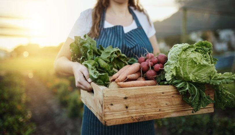 Organik Beslenme Popüler Bir Diyet Yaklaşımı mı Sağlık İçin Gereklilik mi?