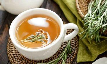 Biberiye çayı nasıl yapılır? Biberiye çayının faydaları nelerdir? İşte detaylar...