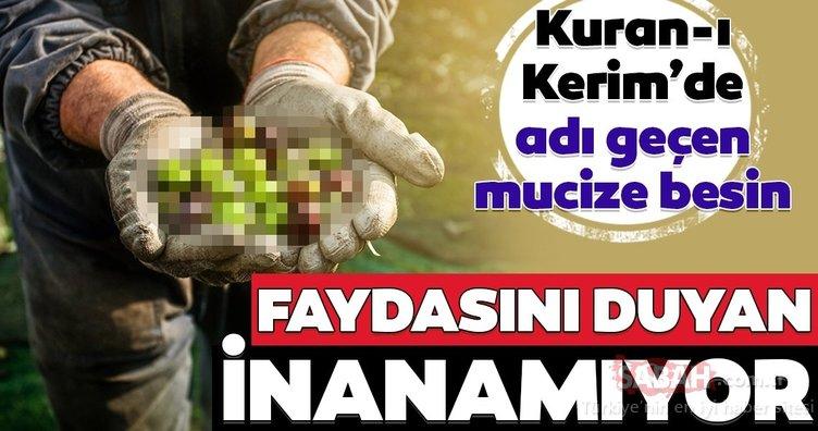 Kuran-ı Kerim'de adı geçen mucizevi besin...
