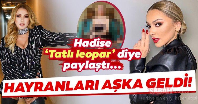 Ünlü şarkıcı Hadise 'Tatlı leopar' diye paylaştı hayranları aşka geldi! İşte Hadise'nin yeni yıl pozu...