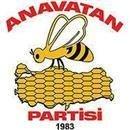 Anavatan Partisi yüzde 41,5 oy oranı ile 54 ilde belediye başkanlığı aldı