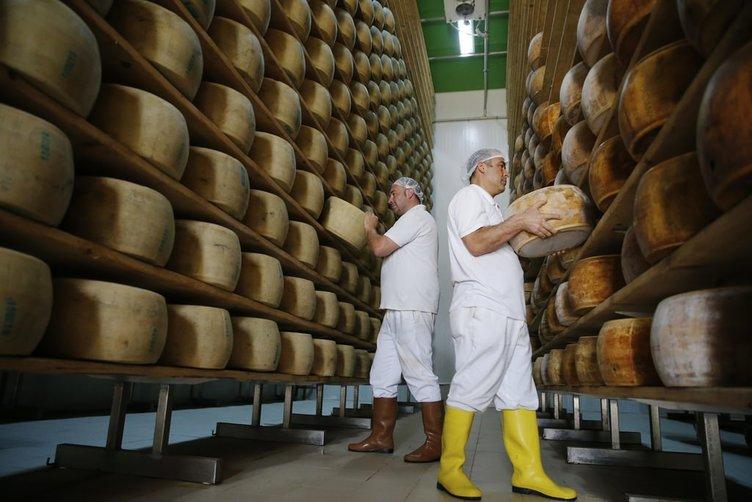 Avrupa'nın ünlü peynirleri Antalya'da üretiliyor