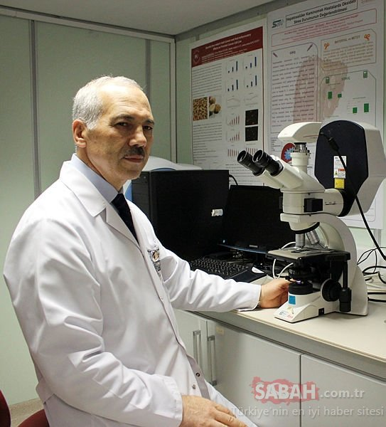 Uzun araştırmalar sonucunda ortaya çıktı! İşte kanser hücrelerini öldüren mucizevi besin...